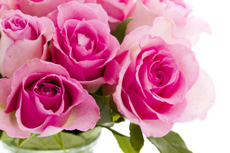 Small bouquet of fresh pink roses.