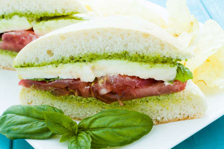 Gourmet caprese sandwich with chips on the side. photo