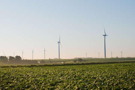 Wind turbines farm at sunrise in Iowa. Imagens