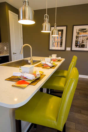 signle: 2013 Parade of Homes showcasing new houses and new interiors. Editorial