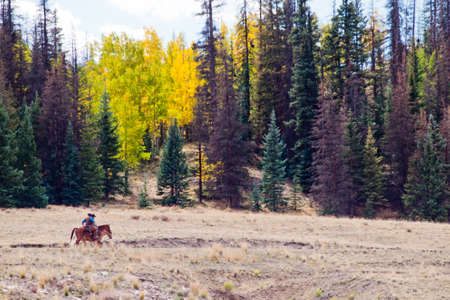 colorado mountains: Two cowboys after long day of work on the ranch in Colorado. Stock Photo