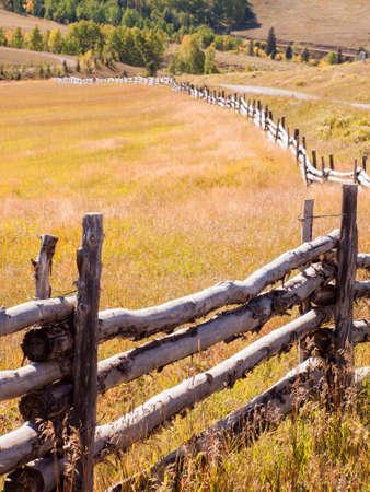 split rail: Split rail fence on the ranch, Colorado.