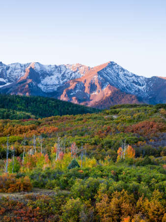 The Dallas Divide is a Colorado icon, well known for its vivid fall colors produced by scrub oak and aspens. Stock Photo