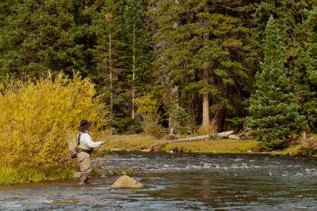 hombre pescando: Fly pescador en r?o Taylor, Colorado. Foto de archivo
