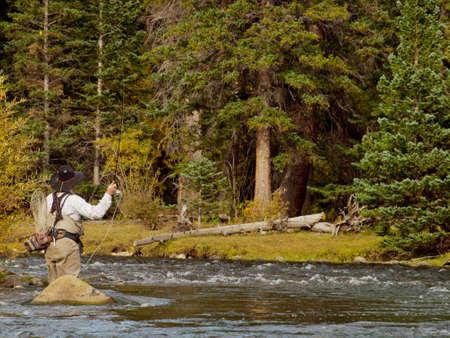 fly fishing: Fly fisherman at Taylor River, Colorado.