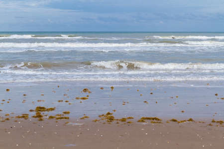 south padre: Winter on the beach of South Padre Island. Stock Photo