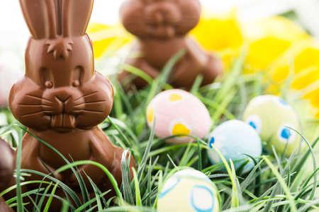 osterhase: Ostern Schokoladenhasen aus Vollmilch und dunkler Schokolade.