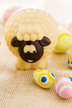 Easter chocolate sheep mafe of white chocolate.