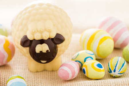 pasch: Easter chocolate sheep mafe of white chocolate.