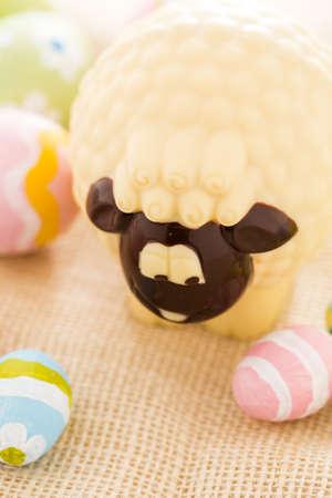 pasch: Pasqua pecore cioccolato mafe di cioccolato bianco.