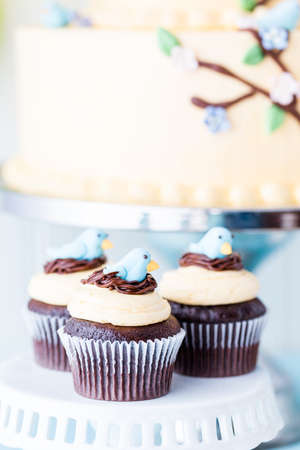 Gourmet Spring cupcakes with blue bird decoration. photo