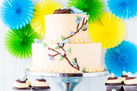 Gourmet Spring two layer cake with blue birds and spring flowers.