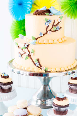 Gourmet Spring two layer cake with blue birds and spring flowers. photo