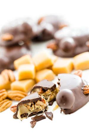 미식가 캐러멜 피칸 거북은 밀크 초콜릿과 전체 피캔으로 만들었습니다. 스톡 콘텐츠