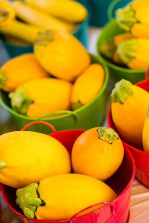 vegetabilis: Organic fresh produce at the local farmers market. Stock Photo