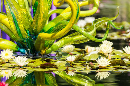 chihuly: Denver, Colorado, USA-August 12, 2014. Large glass sculptures by Dale Chihuly in the garden.