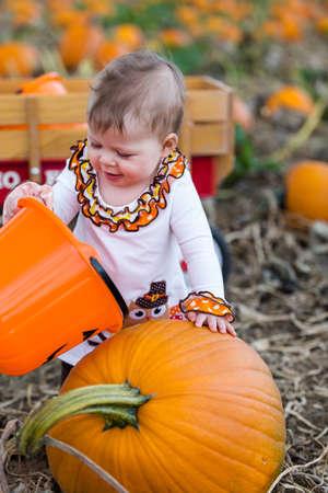 Choosing a pumpkin at a pumpkin patch on Fall day. Stock Photo