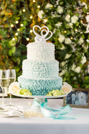 wedding accessories: Gourmet tiered wedding cake as centerpiece at the wedding reception.
