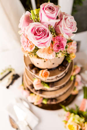 rosaceae: Gourmet tiered wedding cake at wedding reception.