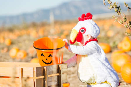 old wood farm wagon: Cute kids in Halloween costumes at the pumpkin patch. Stock Photo