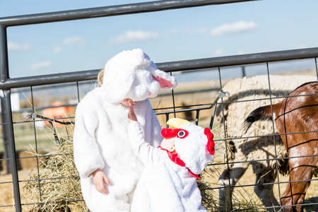 Cute kids in Halloween costumes at the petting zoo. photo