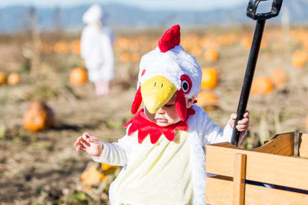 Cute kids in Halloween costumes at the pumpkin patch. photo