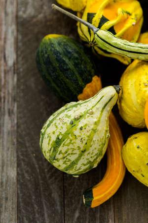 dried gourd: Fresh organic pumpkins from the local farmers market.