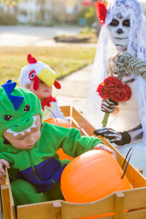 trick or treating: Trick or treating in costumes on Halloween night.