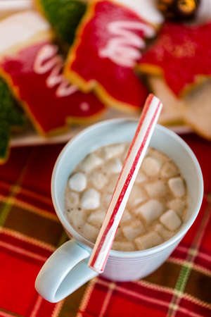 stirrer: Hot chocolate garnished with small white marshmallows and pepperming stirrer. Stock Photo