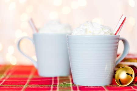 stirrer: Hot chocolate garnished with whipped cream and peppermint stirrer.