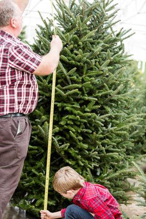 Family selecting a tree for Christmas at the Christmas tree farm. photo