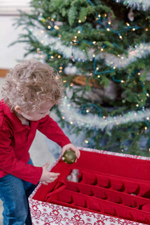 3 year old boy: Family decorating beautiful live Christmas tree.