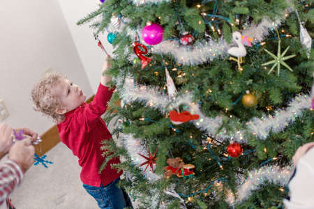 13 year old boy: Family decorating beautiful live Christmas tree.