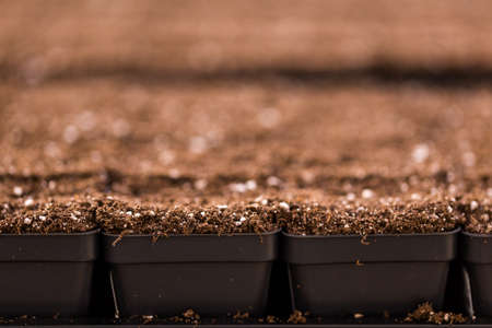 planting season: Small planting pots with topsoil ready for planting season. Stock Photo