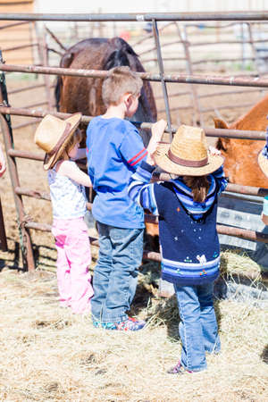 accessories horse: Denver, Colorado, USA-March 28, 2015. Typical second birthday party at the community farm. Editorial