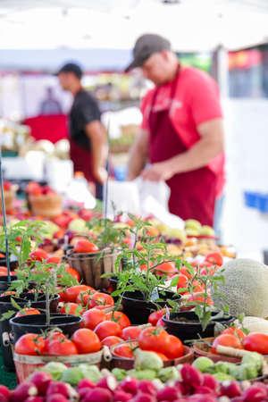vegetare: Summer farmers market on Main Street in Parker, Colorado.