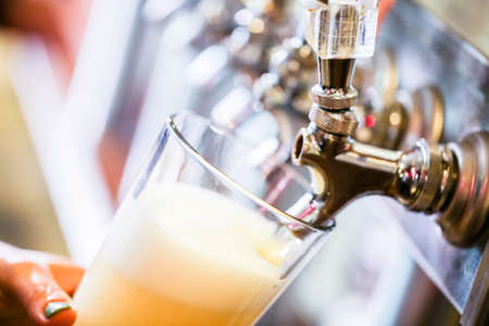 bares: Bartender derramar cerveja no bar. Banco de Imagens