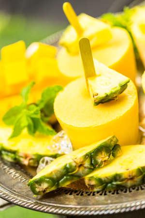 夏 rpicnic でマンドゥ、パイナップル、cocconut の牛乳で作った自家製の低カロリー。