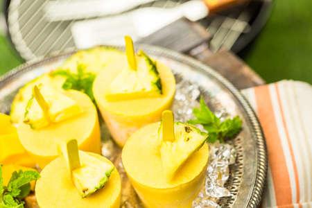 Homemade basso contenuto calorico a base di Mando, ananas e latte cocconut al rpicnic summe. Archivio Fotografico - 42161223