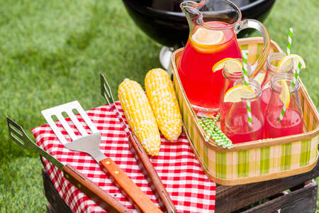 mealie: Summer picnic with small charcoal grill in the park.