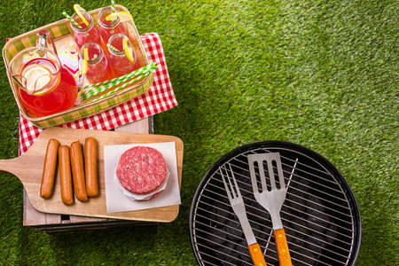 barbecue grill: Summer picnic with small charcoal grill in the park.
