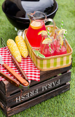 sweetened: Summer picnic with small charcoal grill in the park.