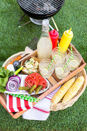 Small summer picnic with lemonade and hamburgers in the park. Фото со стока