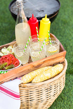 mealie: Small summer picnic with lemonade and hamburgers in the park. Stock Photo