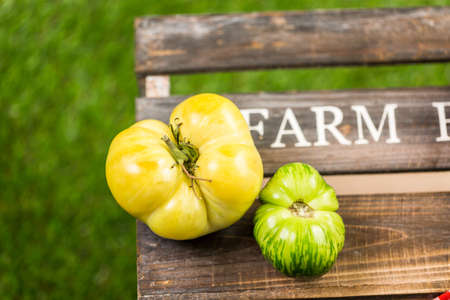 heirloom: Freshly picked heirloom tomatoes from the backyard farm.