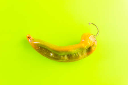 Mild chili pepper on green background.