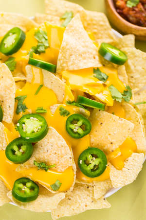 tortilla chips: Vegetarian nachos with tortilla chips and fresh jalapeno peppers.