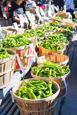 piperaceae: Denver, Colorado, USA-September 9, 2015. Green chili peppers in baskets at the local Farmers Market.