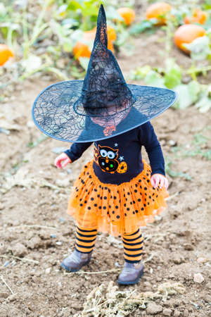 hallooween: Toddler in Hallooween costume playing at the pumpkin patch.