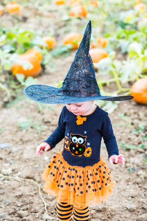 babies playing: Toddler in Hallooween costume playing at the pumpkin patch.